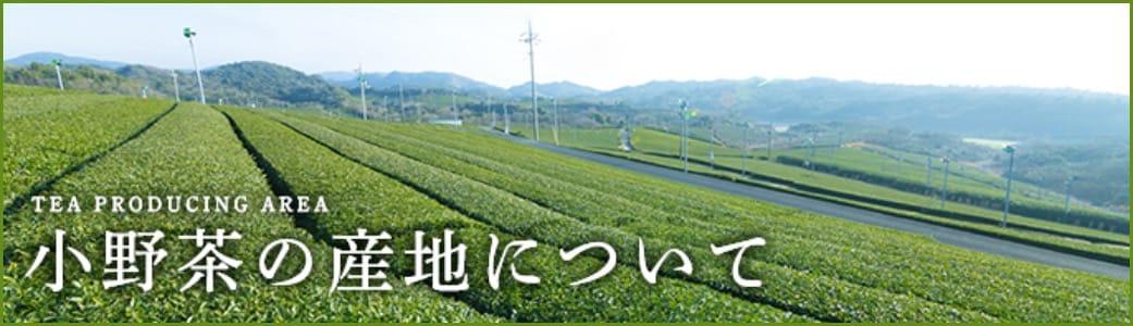 小野茶の産地について